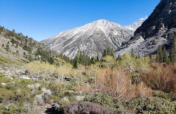 Big Pine Creek, North Fork Trail