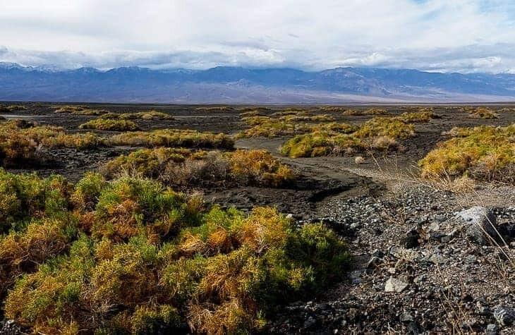Death Valley National Park photos & journal